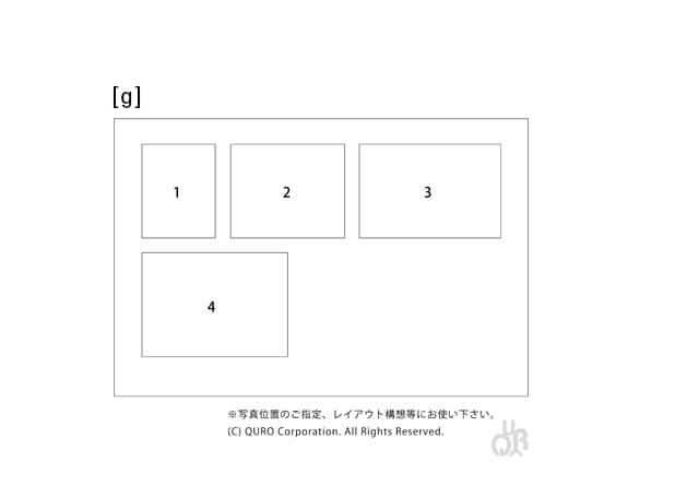 型番【g】画像配置図