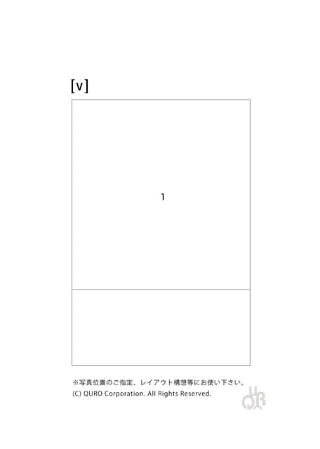 型番【v】画像配置図